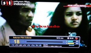 sfi channel tvkuindo