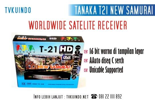 tanaka (6)