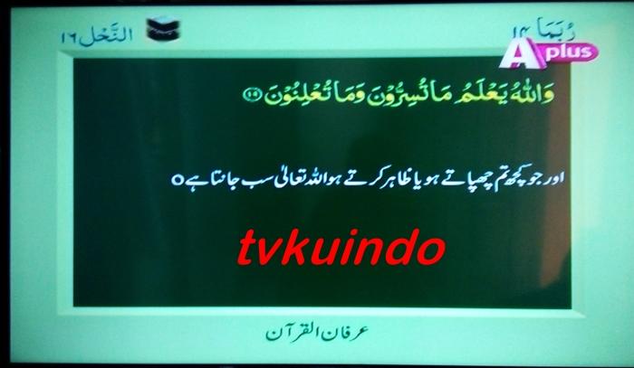 a tv (2)