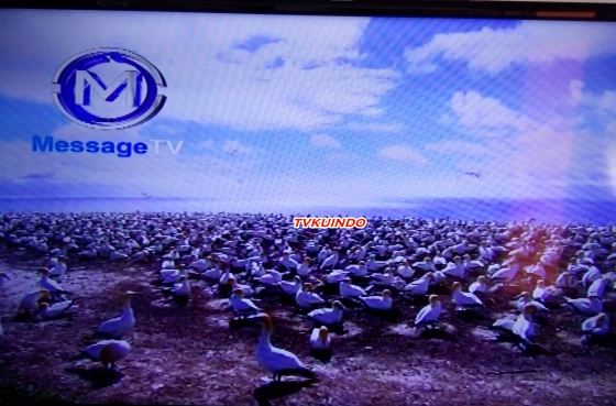 masange-tv-1