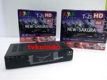 Tanaka New Sakura