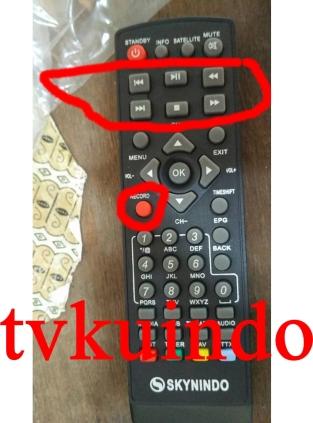 skynindo-6