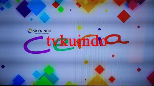 skynindo-9