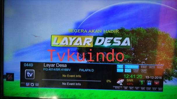 tv-desa1