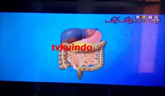 king tv (1)