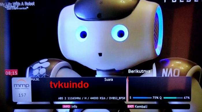PULSE TV (3)