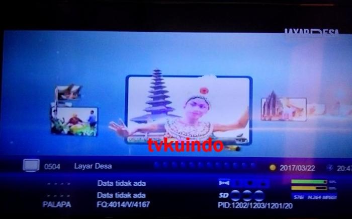 tv desa (3)