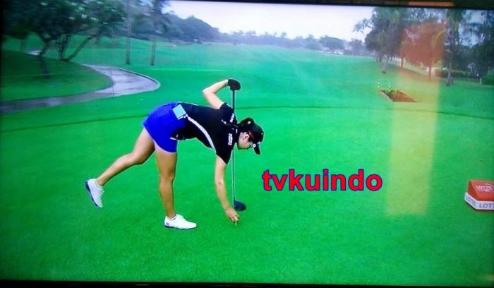 golf5 (1)