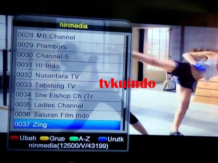 ninmedia channel (1)