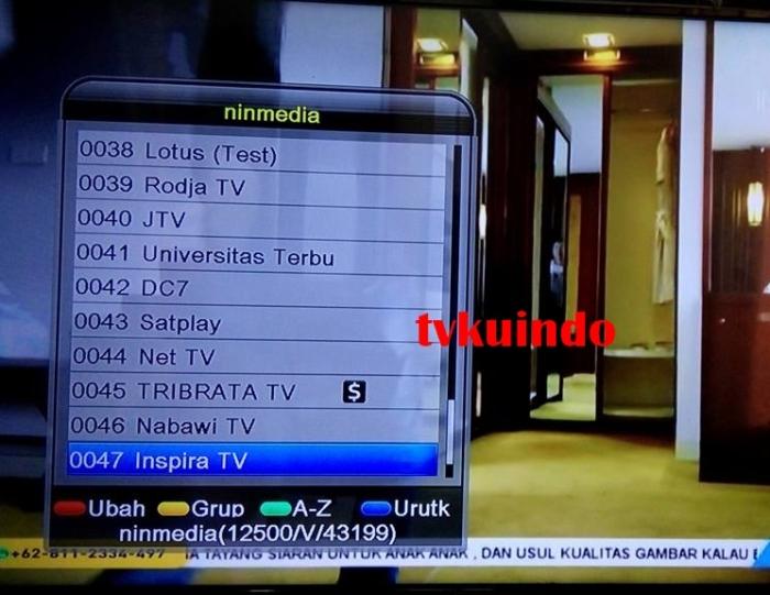 ninmedia channel (3)