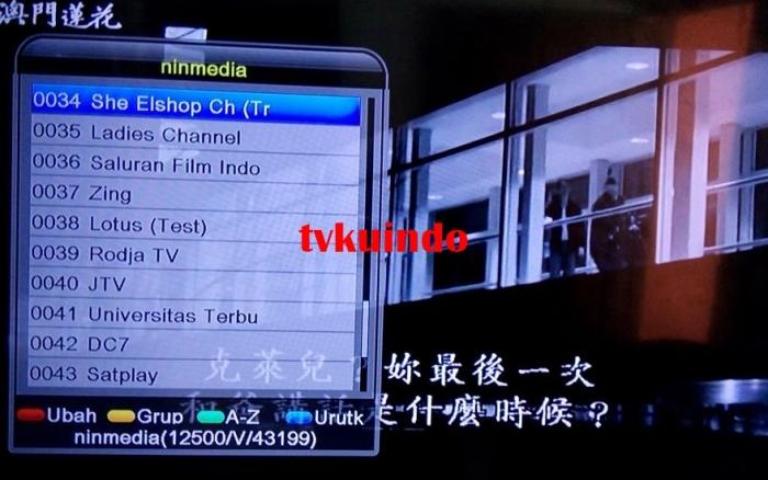 ninmedia channel (6)