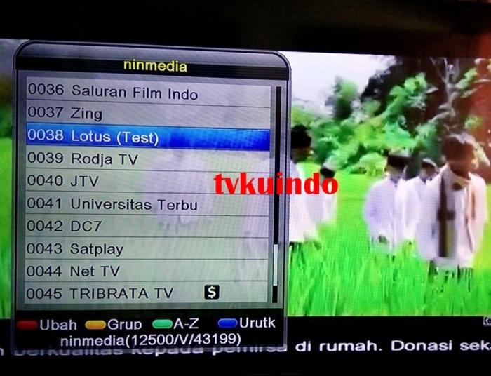 ninmedia channel (7)