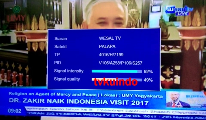 wesal tv (4)
