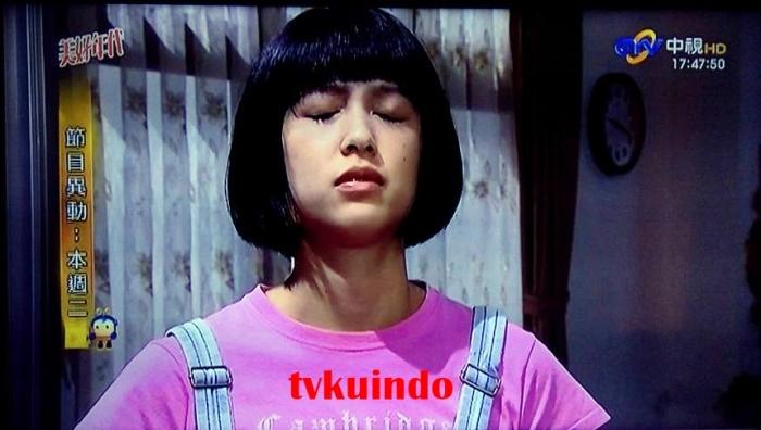 channel skynindo (6)