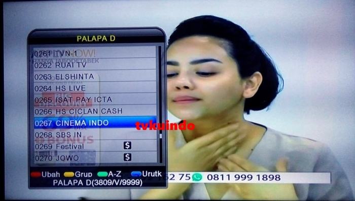cinema indo (1)