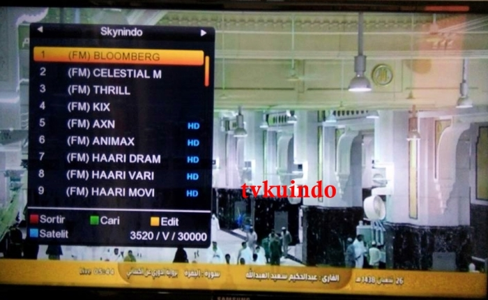list channel skynindo (2)