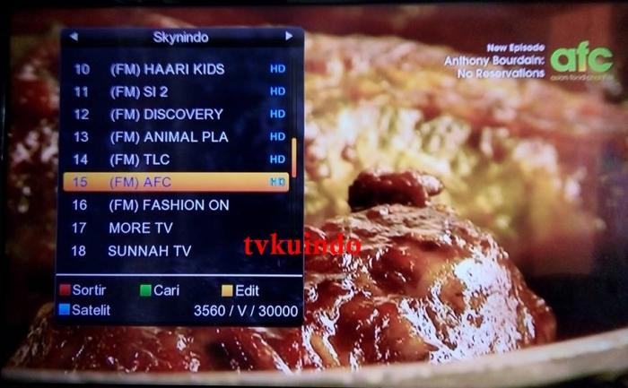 list channel skynindo (3)