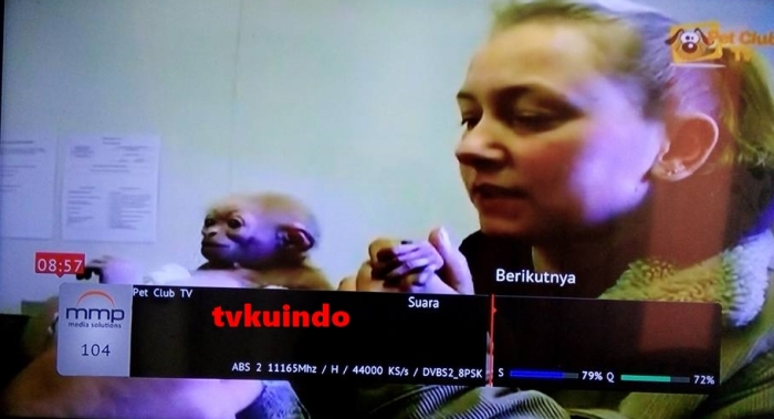 pet club tv (1)