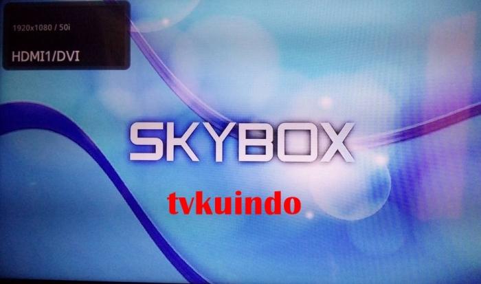 skybox A1 (11)