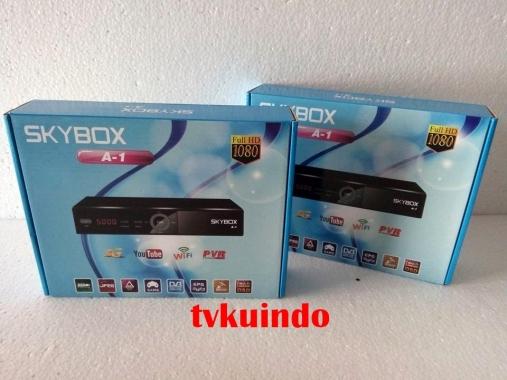 skybox A1 (6)