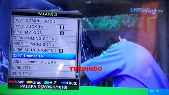 ummat tv palapa D (2)