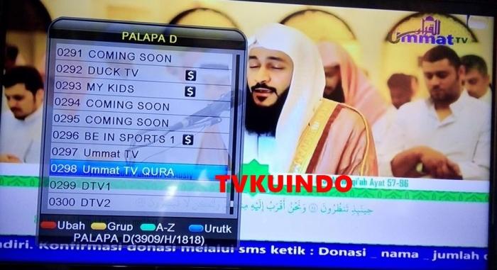 ummat tv palapa D (4)