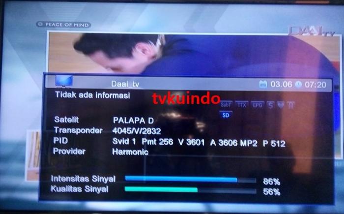 dai tv (2)