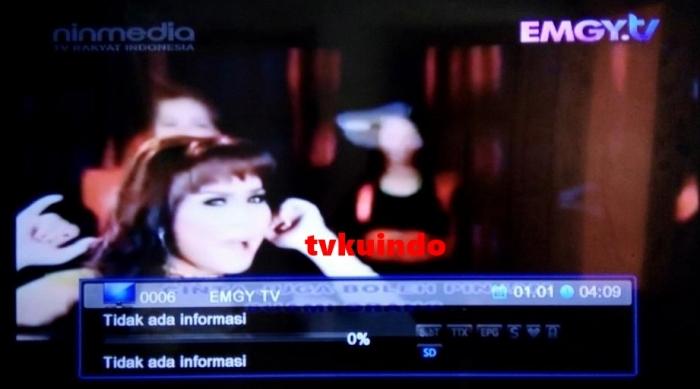emgtv (4) - Copy
