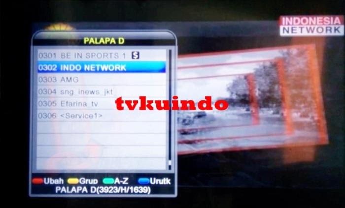 indonesia network (4)