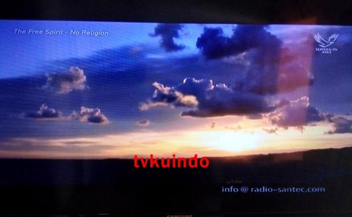 shopia tv (4)