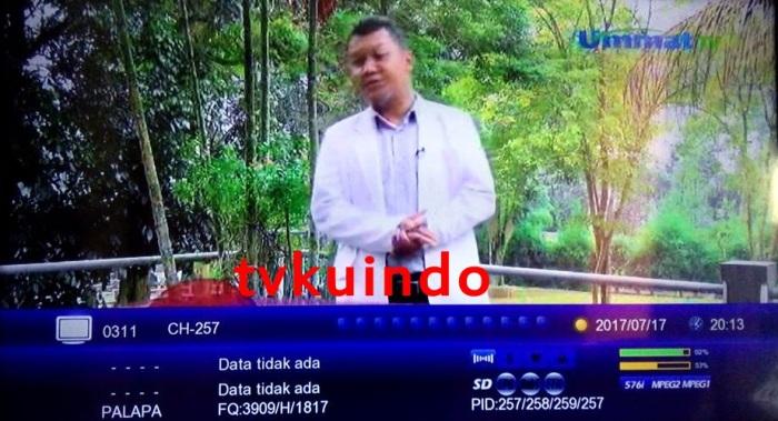 ummat tv (2)