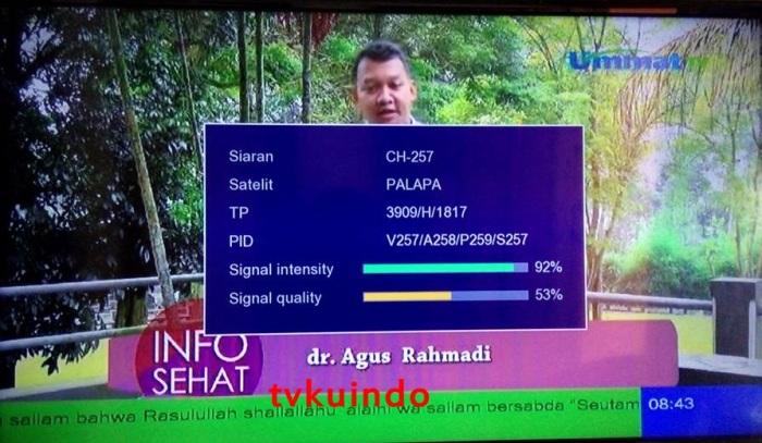 ummat tv (3)